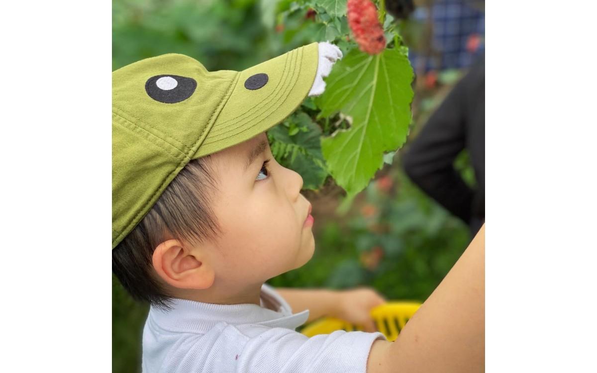 Visit Hien Minh's Organic Garden