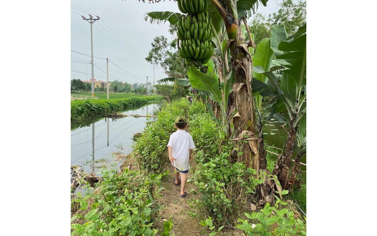 Hien Minh Garden 2021