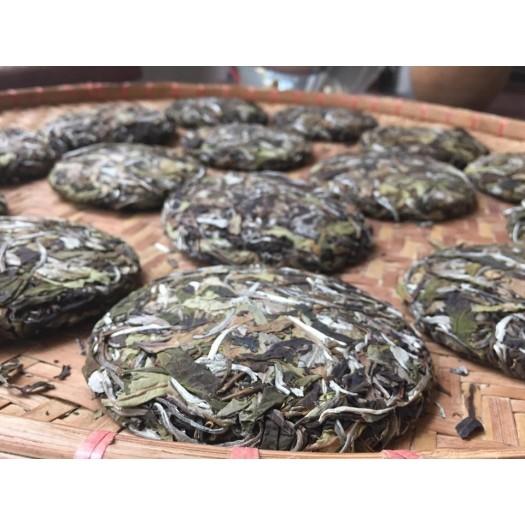 Youth White Tea – Thanh Xuân Trà